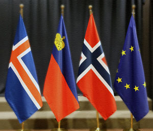Eea-flags-300