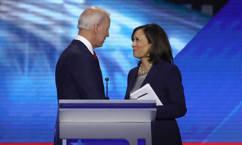 Files-us-politics-vote-democrats-biden-harris